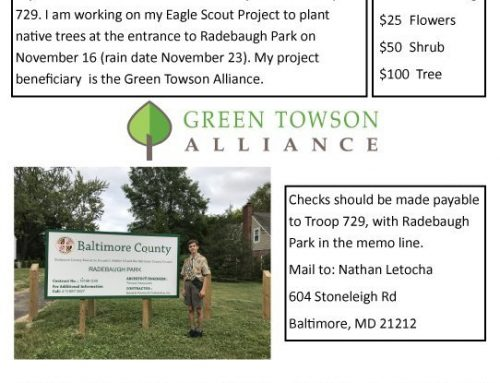 Sponsor a tree at Radebaugh Park!