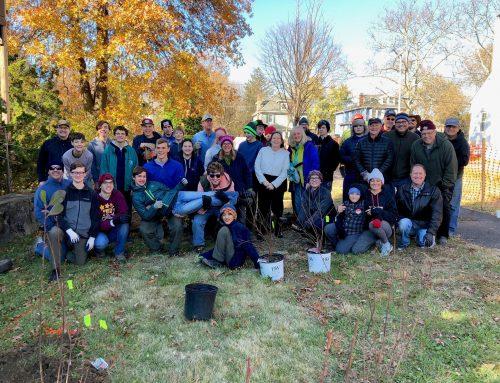 Radebaugh Park Eagle Scout project, November 2019