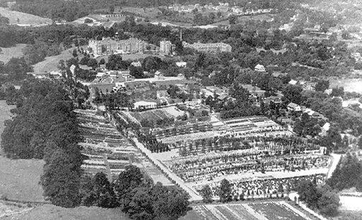 Towson Nurseries 1925